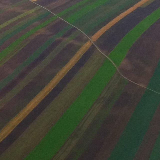 Herbstliche Felder mit einem Weg der quer durch das Bild führt