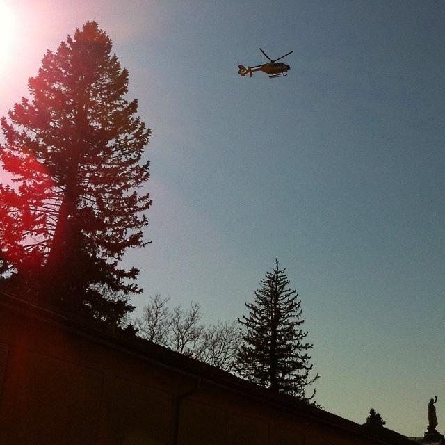 Hubschrauber und Baum