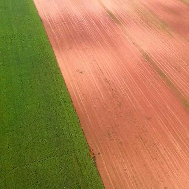 Felder in grün und braun